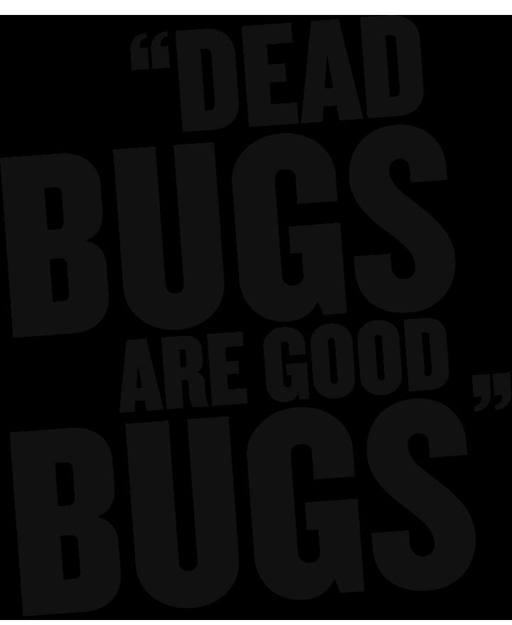 Dead Bugs Text